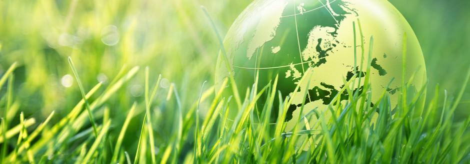 Temamøte 16/3-17: Importert biodiesel fra bærekraftig palmeolje – Colombia løser norsk klimautfordring