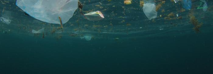 Stort engasjement under temamøtet 1/11-19 Kan sirkulær økonomi rydde havet for søppel?